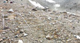 Besiedelungsstudien im Gletschervorfeld
